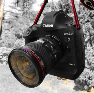 Canon 1dx Mark